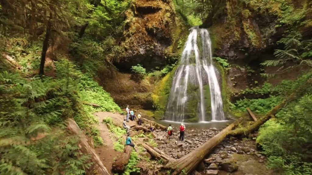Eugene Wilderness